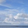 週末ライフ。「『オンとオフ』を切り替える。夏至も近づく青葉の頃。乾いた風が誘ってくれた海辺のリフレッシュ」の巻。