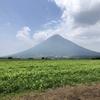 Green Fuji