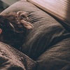 【コレで決まり!!】眠りが浅いとお困りのあなたに改善方法を伝授