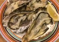 一斗缶入り「殻付き生牡蠣」を食べよう