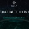 仮想通貨IOTA(アイオタ)もはやブロックチェーンではない、鈴木あみだ。