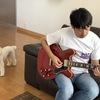 2005年製のGibson ES-335を買いました #ギターの話です
