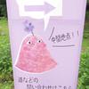 ちゅういっちゃんが、咲かせた「南沢あじさい山」のあじさいを見に 愛宕神社との分岐からあじさい山入り口まで
