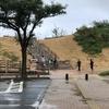 【観光の所要時間】日本一周で行った鳥取砂丘を更に紹介する【アクティビティなど】