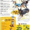 犬と人「目線で絆」特別な能力 「最古の家畜」関係探る