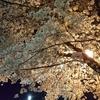 渋谷徒歩30秒!夜間診療OKのむちうち交通事故治療院・原宿・恵比寿・代々木・五反田・新宿