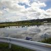 奈良県から北海道へ - 新十津川町吉野 -