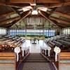 ハワイ挙式費用を格安に = 教会挙式の費用編 =