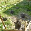 庭に小屋を作ってみた その4 2015.5.27