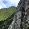 断崖絶壁に幻のカタツムリを求めて