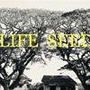 太陽の死と再生、そして天鈿女(アメノウズメ)【生活のタネ(古典)】