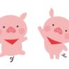 焼き豚を作ってみた。豚バラ肉&豚肩ロース。どっちが美味しい?