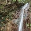 11月19日 六甲難ルート西山谷へ! 山に愛された?愛情ノ滝にてあなた一筋に。。