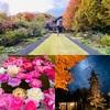 ルゼ・ヴィラで美しい庭園とアンティークに囲まれ優雅なひとときを過ごす