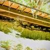 けわしい参道の脇にほられている『堂の迫磨崖仏』 大分県豊後高田市大岩屋