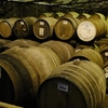 ウイスキーでいう『樽』『カスク(cask)』とは? ウイスキーの味の決め手となる樽熟成について解説します!!