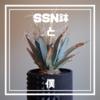 「SSN prototype鉢」と僕【ゆるぷ様オリジナルの3Dプリンタ製プラスチック鉢が凄い】