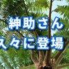 【動画あり】島田紳助さんYouTubeに登場、山田親太朗の全財産11円を暴露