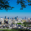 仙台が日本で一番住みやすいと思う理由11選【雪ない・暑くない】