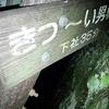 富士登山に向け 小学2年生と大山練習登山 おすすめコースその2