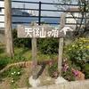 日本一低い山に登った話