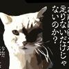 【猫の映画】おすすめランキング/猫飼えない人はこれ観てモフモフ