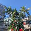 12月に叶えた WISH LIST ☃️-クリスマスシーズンを楽しみ尽くす- ③