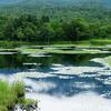 知床五湖、2度目の正直として行ってみたいです。