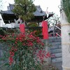 下根稲荷神社・色な場所の思い出・赤7…