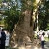 淡路島の伊弉諾神宮へ行って来た50代主婦