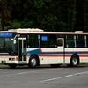 ちばレインボーバス 250