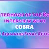 バラの姉妹団(SOTR)による水瓶座の時代最終立ち上げCOBRAインタビュー (2020/12/15)