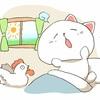 【暴れる】猫が朝方に噛む、起こす!早朝に暴れる理由と対策3つ!