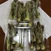 「たらの芽」たくさん出荷しています。