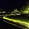 夏の幻想庭園