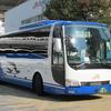 JR東海バス 減りつつある青屋根車、黒屋根車