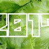【2017年】「レタス収穫量」ランキング