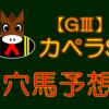 【GⅢ】 カペラS 結果 回顧
