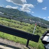 絶景!札幌〜小樽サイクリング!!