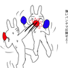 【キックの魅力】⑰パンチと言えばストレート 細かすぎて伝わらないキックボクシング楽しさ・素晴らしさ