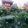 パレスオブファインアーツにいくはずが日本庭園でどら焼きを食べることになった一日
