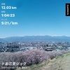 4/10(土) お花見!