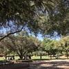 素敵な公園