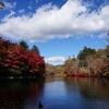 「雲場池」へ到着!圧巻の紅葉の後はそば処「川上庵」へ