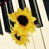 【楽器にも、耳がある?】ねねの音彩(ねいろ)~ピアノサロン通信Vol.3~
