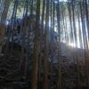 スタッフの山行記録:日和田山