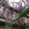 越谷久伊豆神社