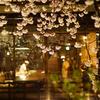 祇園白川ライトアップ(続き)