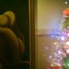 スッキリとメリークリスマス・35RC + Sunny 16