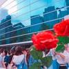 15005本の薔薇に誓う未来〜Sexy Zone STAGE Tour〜